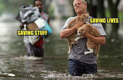 Saving Stuff, Saving Lives