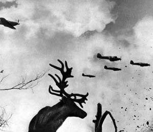 Vassili Grossman: Années de guerre (extrait I)