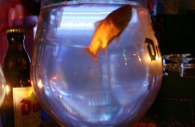 La dépression du poisson rouge
