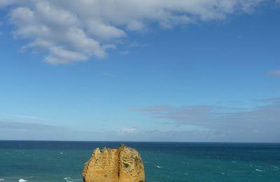 Kangourou Island