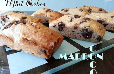 Mini Cakes Gourmands - Marrons Coco