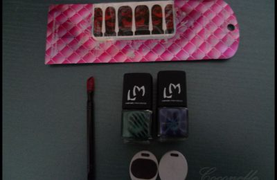 Commande LM cosmetics + test vernis magnetique