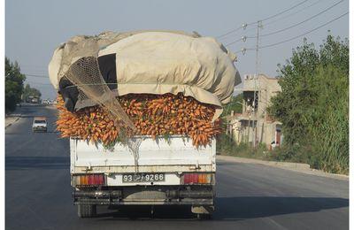 Les carottes sont cuites. J0