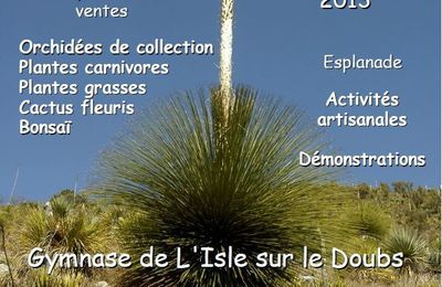 EPINE DE FRANCE : 6ème édition de la Saint-Hyp'aux Cactus, Gymnase L'Isle/Doubs, 7, 8 et 9 juin 2013