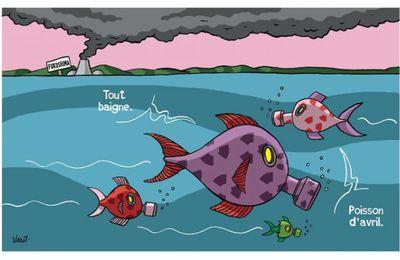 Pollution des océans : une expédition part à la découverte du 7ème continent (Basta)