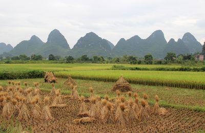 Les pics de Yangshuo