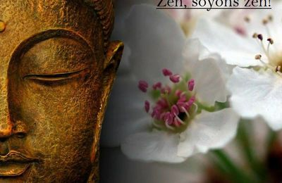 Image et citation zen