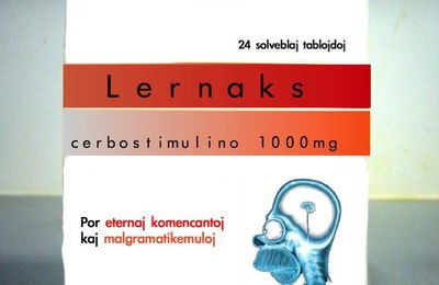 Lernaks