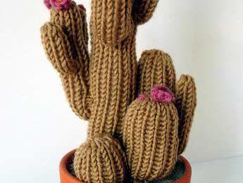 Un cactus n'a pas besoin d'être arrosé...