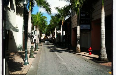 Caribbean Experience - Sunny Monday in Sint Maarten