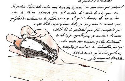 Le journal d'Hirondelle (Amélie Nothomb)