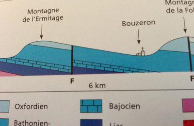 Côte Chalonnaise 5: le vignoble de Bouzeron