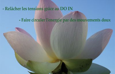 COURS DE DO IN - QI GONG 2013/2014