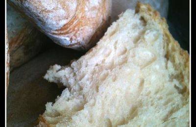 Pains type ciabatta