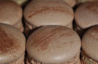 Macarons ( meringue italienne ) de noël !