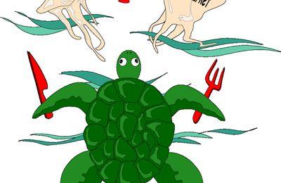 tortues et plastiques