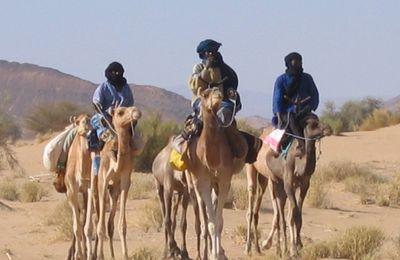 la caravane de sel au Niger dans le Ténéré