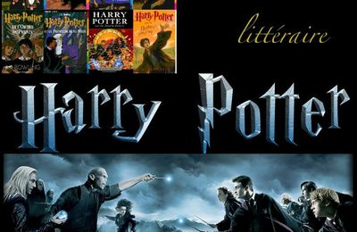 Dossier Harry Potter, chronique du tome 1