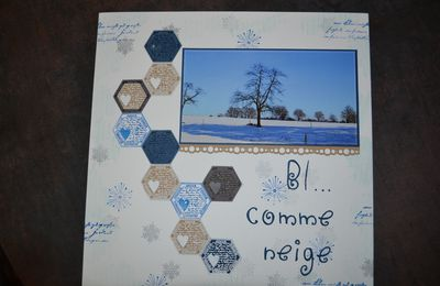 Bl..... comme neige