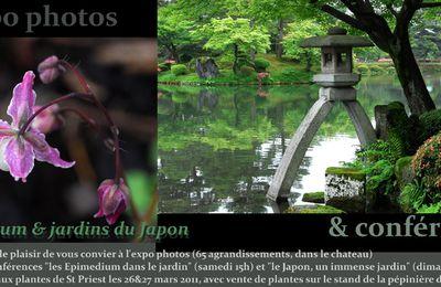 Epimedium et jardins du Japon