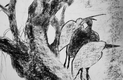 Oiseaux sur la branche