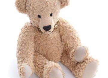 Mon ours à moi