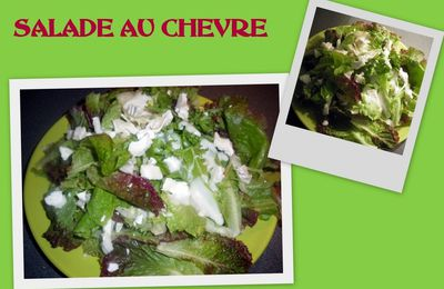 SALADE VERTE AU 3 FROMAGES 4pp2