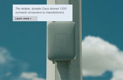 What Items You Need When Ordering a Cisco Aironet 1530 Outdoor AP?
