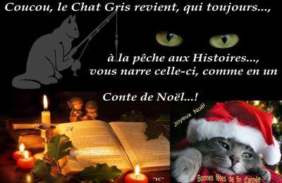 Le Chat Gris revient pour l'histoire d'une rencontre entre...!!!