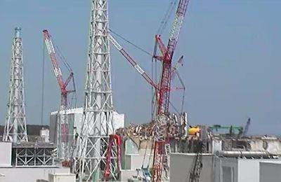 La catastrophe de Fukushima: Tout sur les conséquences aujourd'hui
