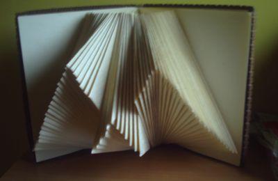 """livre lumiére en papier et carton """"braillamp"""""""