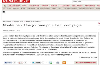 JOURNEE INTERNATIONALE DE LA FIBROMYALGIE 2013