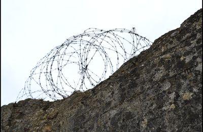 La pointe du Hoc : lieu de drame pour 250 rangers américains