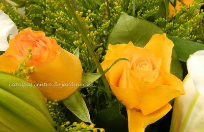 El lenguaje de las flores - Introducción