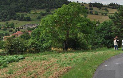 Itinéraire 7 - depuis Brioude ////