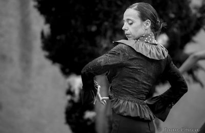 STAGE DE DANSE FLAMENCO…