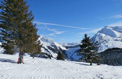 Les Bronzés font du ski #2