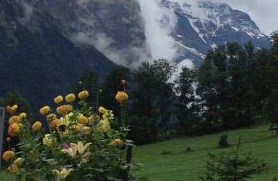 Switzerland - Lauterbrunnen (August)