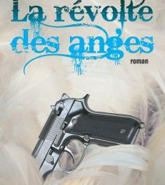 La révolte des anges – David Ghisdal
