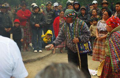 Guatemala, terre des arbres (suite)