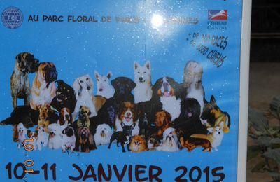 Paris dog show 2015