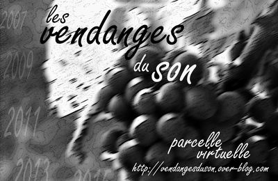 Parcelle virtuelle des Vendanges du Son