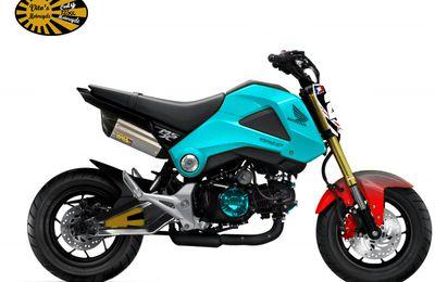 Honda MSX 125 Prépa/Tuning