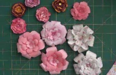 Fleurs / Robes