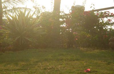 Un week end au soleil: Alibaug