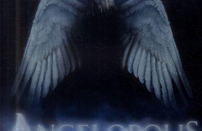 Du sexe des anges
