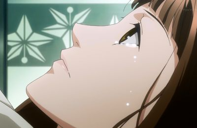 Hiiro no Kakera Episode 11 VostFR