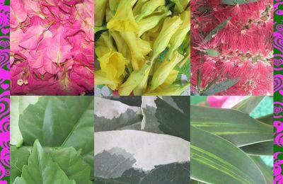 Nouvelles couronnes florales