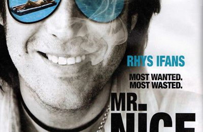 Analyse et critique du film Mr Nice