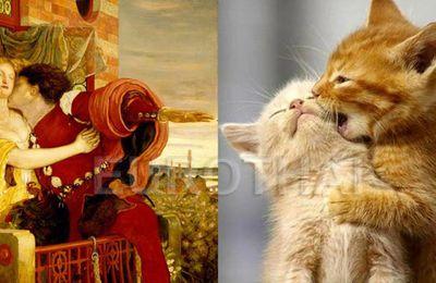 Quand nos chats prennent la pose...